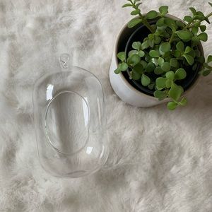 Clear Oval Glass Hanging Planter
